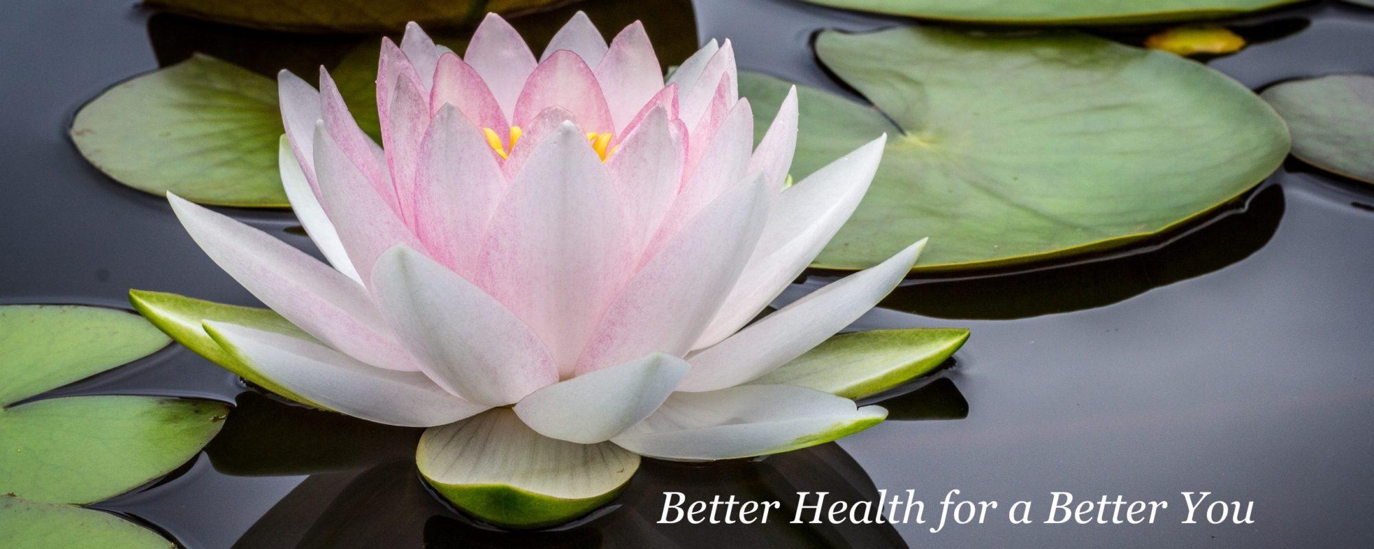 Allergy elimination allen acupuncture and wellness izmirmasajfo